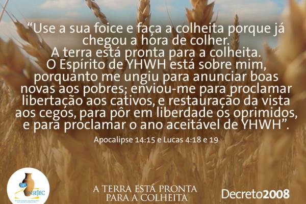 Decreto 2008