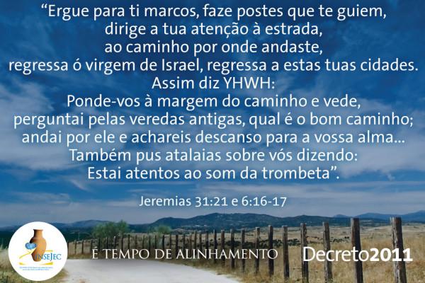 Decreto 2011